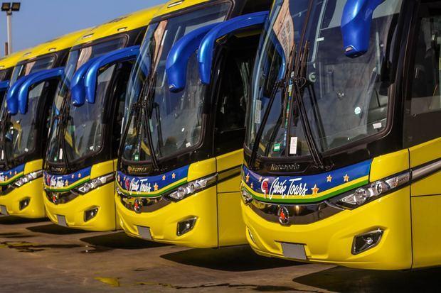 Algunos de los modernos autobuses de Caribe Tours.