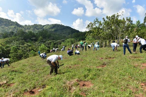 Voluntariado Bancentraliano realizó su XIV jornada de reforestación en el río Ozama