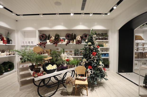 """La """"Navidad Espectacular 2019""""de Casa Cuesta a Punta Cana."""