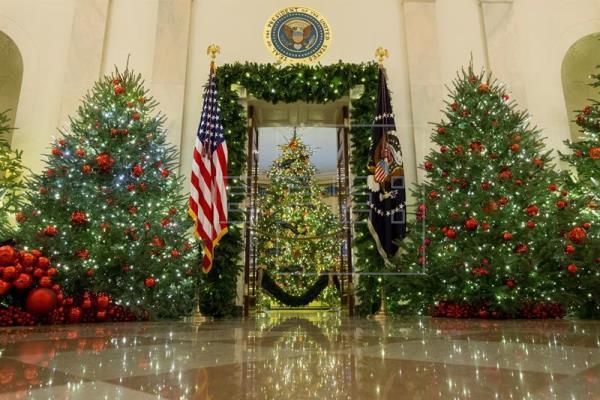 El árbol navideño, un protagonista que esta temporada mengua en EE.UU.