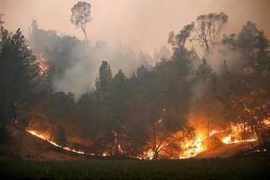 Desde principios de año, ha habido más de 8.200 incendios forestales que han quemado más de 4 millones de acres en California, donde las llamas destruyeron además cerca de 8.400 estructuras, indicó Calfire en un comunicado.