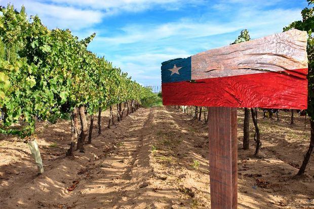 Chile conecta proveedores para el sector silvoagropecuario con RD y el Caribe