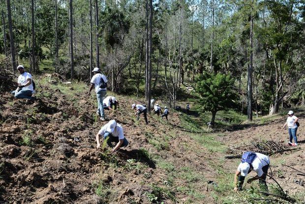 Corporación Zona Franca siembra más de cinco mil plantas en SAJOMA