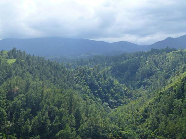 Medio Ambiente llama a preservar el planeta en ocasión de celebrarse el Día Mundial de la Tierra.