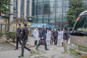 Delegación de la OMS que visitó la ciudad china de Wuhan el pasado mes de enero para investigar el origen del coronavirus causante de la pandemia de covid-19.