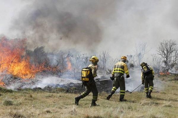 APP predice la propagación de los frentes de incendios forestales