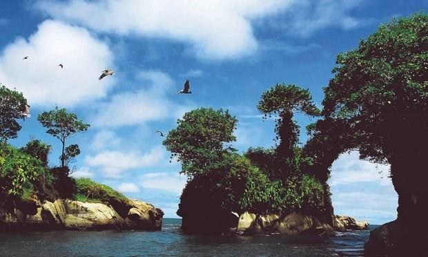 Colombia lanza una guía para aprovechar su potencial en el turismo de naturaleza