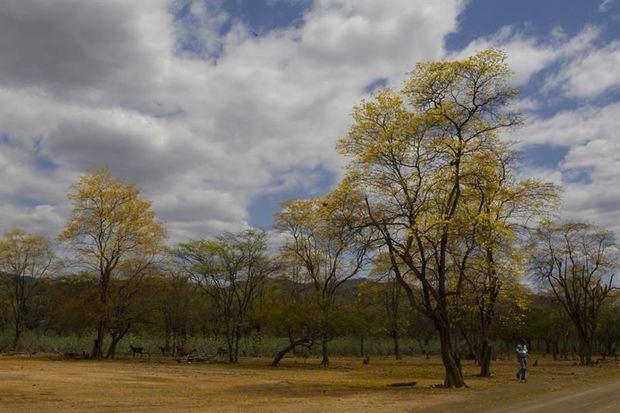Situación de sequía en el país.