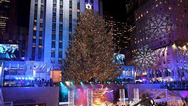 Llega a su destino el emblemático árbol de Navidad del Rockefeller Center
