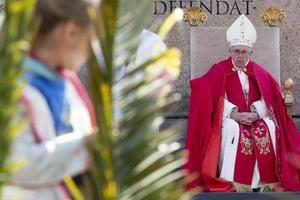 El papa Francisco comenzó hoy los ritos de la Semana Santa con la misa del Domingo de Ramos en la plaza de San Pedro ante decenas de miles de fieles y criticó el triunfalismo que juzga siempre a los demás como peores o fracasados.