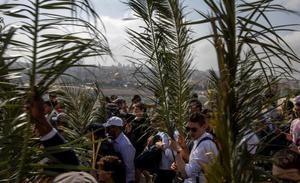 Los peregrinos llevan grandes hojas de palmera en el Monte de los Olivos durante el Domingo de Ramos en Jerusalén Este mientras recorren la ruta tomada por Jesucristo cuando entró alegremente en Jerusalén, marcando el inicio de la Semana Santa, en Jerusalén Oriental.