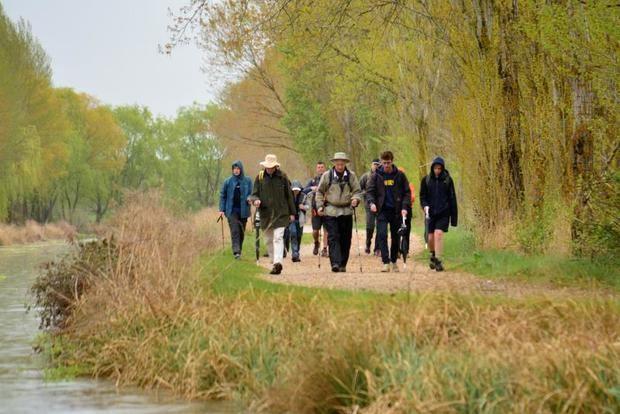 El rey Felipe de Bélgica recorre junto a sus hijos y un grupo de amigos el tramo del Camino de Santiago que coincide con el Canal de Castilla en Frómista