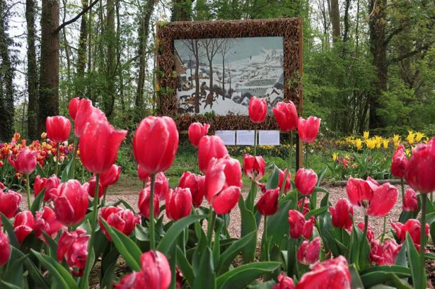 Bélgica abraza la primavera con un millón y medio de flores