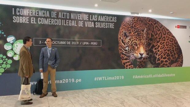 Un par de asistentes fue registrado este jueves a la entrada de la primera Conferencia de Alto Nivel de las Américas sobre el Comercio Ilegal de Vida Silvestre, en Lima (Perú).
