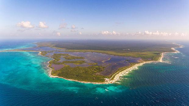 Estrés por calor amenaza a los arrecifes de coral caribeños