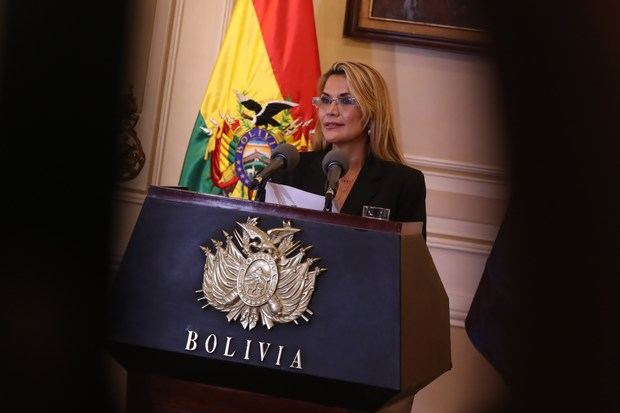 América se divide por la proclamación de la presidenta interina de Bolivia