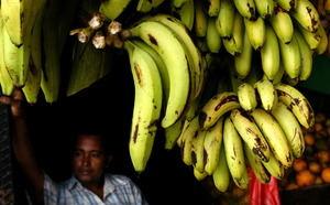Un vendedor de banano espera clientes en un mercado de la ciudad de Panamá.