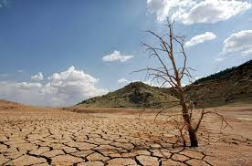 Sur Futuro anuncia proyecto de adaptación al cambio climático