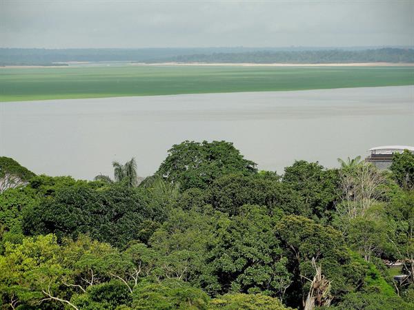 Francia financia proyecto para proteger millones de hectáreas en la Amazonía