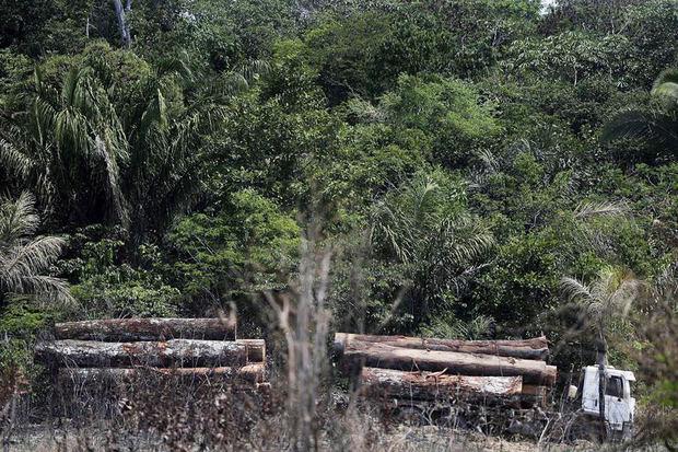 Vista de un camión que transporta madera obtenida ilegalmente en la selva amazónica, el 4 de septiembre del 2019, al sur del estado de Amazonas de Brasil.