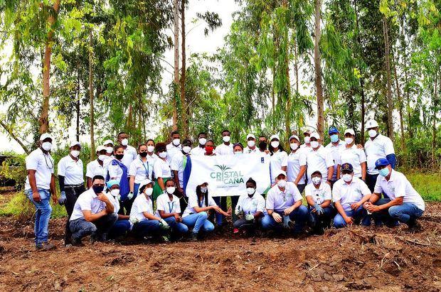 Voluntarios de CAEI plantan mil árboles en San Pedro de Macorís