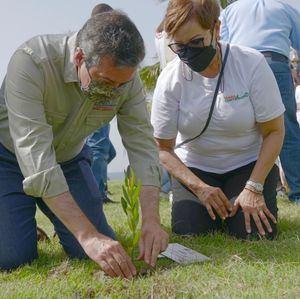 Orlando Jorge Mera , ministro de Medio Ambiente y Milagros de los Santos, plantan un árbol.