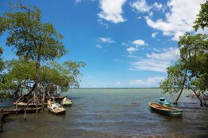 Proyecto busca fortalecer El Seibo frente al cambio climático y los desastres naturales.