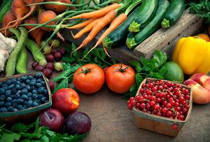 Las importaciones agrícolas serán autorizadas por una comisión.