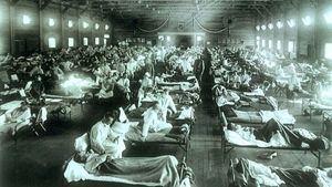 Pandemia de la  Influenza: dentro de la historia.