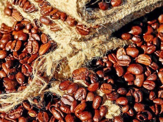 Café de región dominicana de Valdesia recibe Denominación Origen Protegida UE
