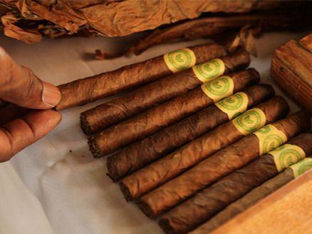 Tabaqueros reciben apoyo del gobierno dominicano