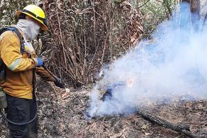 Fotografía cedida hoy por la Unidad de Parques Nacionales Naturales de Colombia que muestra un bombero que combate el incendio forestal del Parque Isla Salamanca, en Sitionuevo (Colombia).