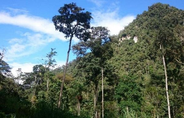 Monte Puyo
