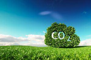 Carbono neutralidad.