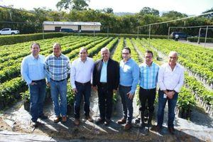 Induban entrega 200 mil plantas de café al Ministerio de Agricultura