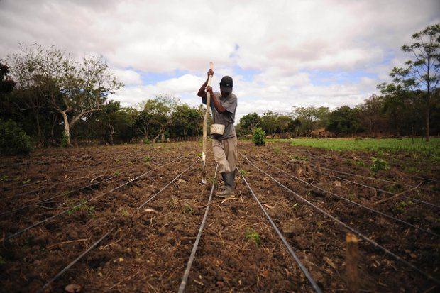 Futuro de Centroamérica pasa por ambiente, integración, comercio y democracia