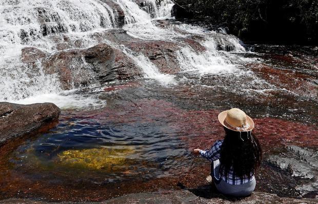 Caño Cristales, el río más bonito del mundo, brilla de nuevo tras la pandemia