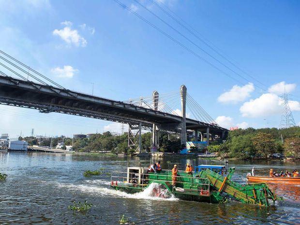 Programa Ribera Verde de la empresa Tropigas en las riberas de del río Ozama.