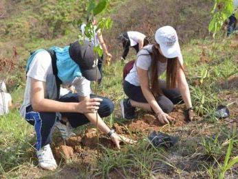 Temporada Reforestación comienza con siembra de 10,000 árboles en Loma Guagua. (Foto:Fuente Externa).