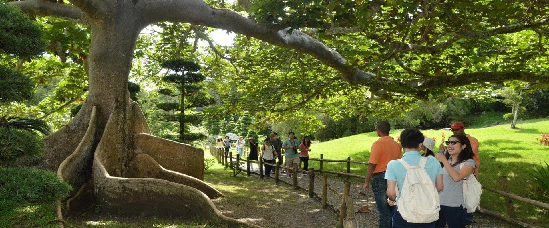 Se inicia el xiii festival nacional de plantas y flores en for Jardin botanico en sevilla
