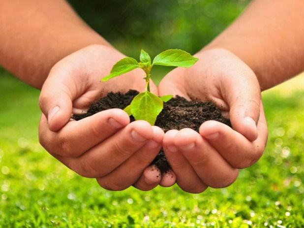 Día Mundial del Medioambiente .