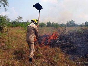 Brasil realiza operación de combate a incendios en parque natural amazónico