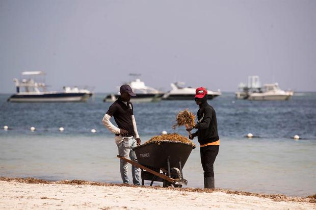 Dos trabajadores limpian una playa cubierta de sargazo, el 1 de septiembre de 2021, en Punta Cana, República Dominicana.