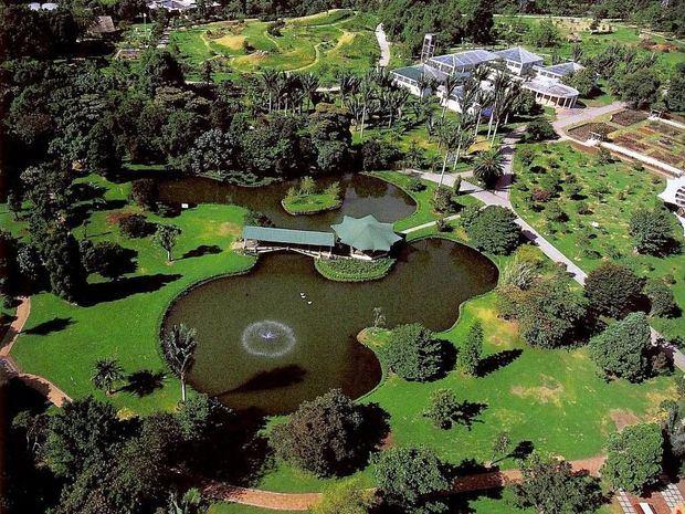 Una visita al pulmón de la ciudad, el Jardín Botánico Nacional Dr. Rafael María Moscoso