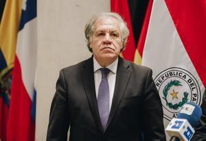 En la imagen un registro del Secretario General de la Organización de los Estados Americanos (OEA), Luis Almagro, quien aspira a la reelección.