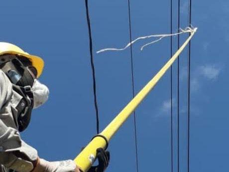 Administrador de la ETED pide a los ciudadanos evitar el uso de las chichiguas durante cuarentena