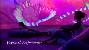 Agenda de Ocio & Cultura: Especial de actividades virtuales para ver desde casa