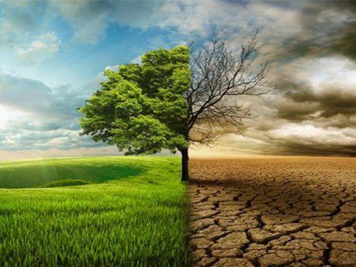 """Debate científico sobre nuevos estilos de vida que permitan mitigar la """"crisis climática"""""""