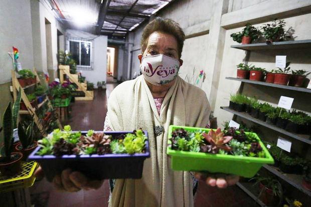 La señora María Saavedra, de 90 años, muestra sus plantas que venderá a través de la plataforma digital Instagram ayer martes, en Santiago, Chile.