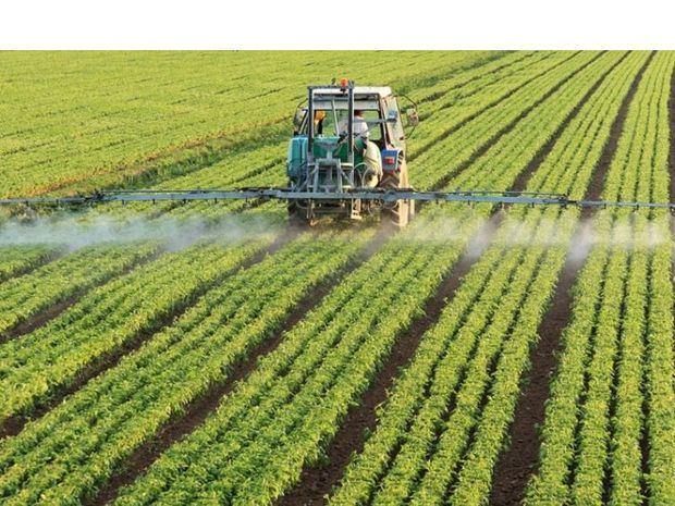 Gobierno inyectará 5,000 millones de pesos al sector agropecuario